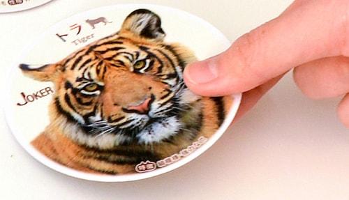 ねこトランプのジョーカーは猫にとって恐怖の対象「トラ」