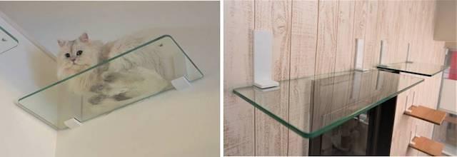 強化ガラスで出来た透明なキャットステップ「ニャンともウォーク」
