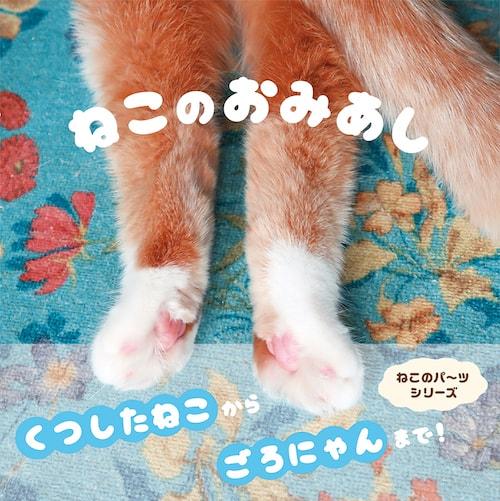 猫の後ろ足ばかりを収録した写真集「ねこのおみあし」