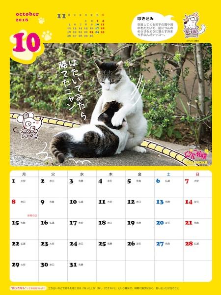 にゃんこ相撲カレンダー2018、壁掛けタイプ