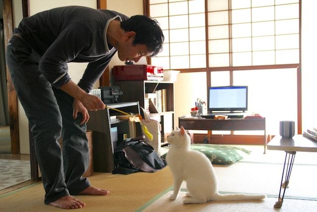 水澤紳吾が猫と遊ぶシーン by 映画「愛しのノラ~幸せのめぐり逢い」