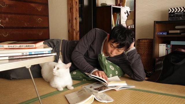水澤紳吾と猫が寄り添い合うシーン by 映画「愛しのノラ~幸せのめぐり逢い」