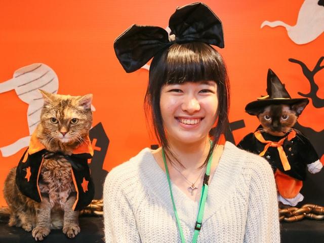 埼玉県大宮の猫カフェ猫家で「ハロウィンにゃんぼ!くじ」が開催