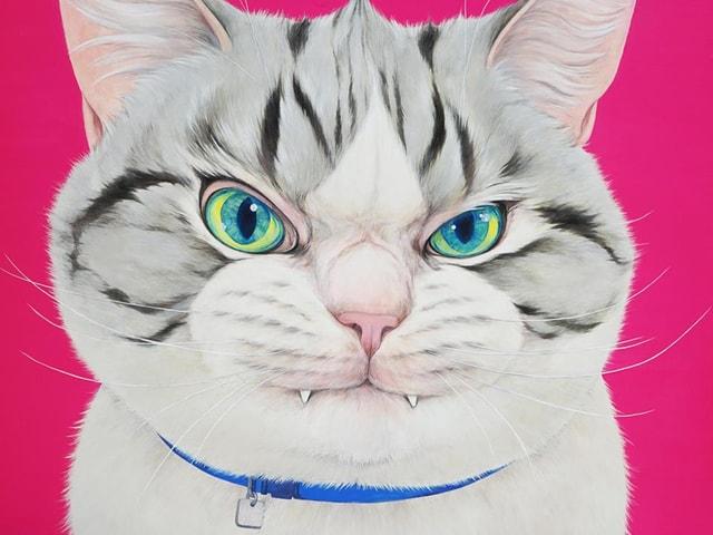夏目漱石の記念館オープン企画、70名の作家による猫作品展・吾輩の猫展