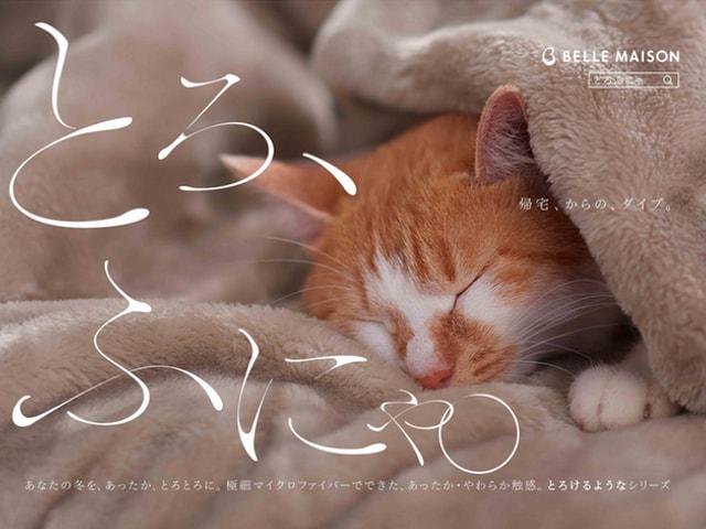 ベルメゾンの「とろけるようなシリーズ」今年は猫とコラボですニャ