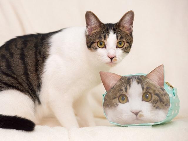 愛猫の顔写真を布にプリントして作れる「リアルねこポーチ」