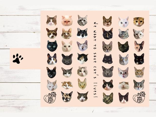 売上の一部を猫の支援活動に寄付するスマホケース、猫の写真を募集中