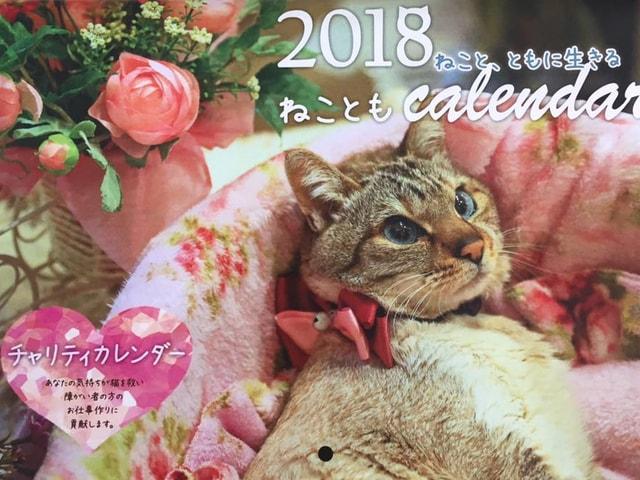 福岡ねこともの会、2018年のチャリティー猫カレンダーを発売中