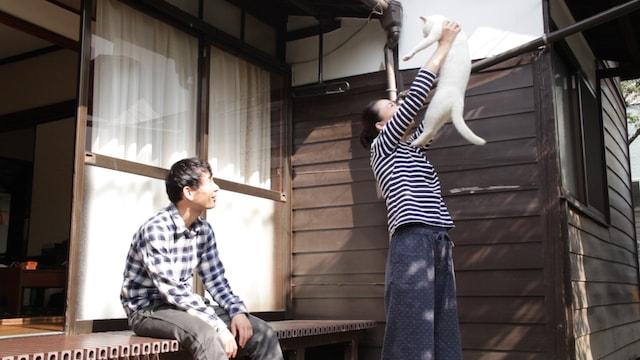 映画「愛しのノラ~幸せのめぐり逢い~」のワンシーン