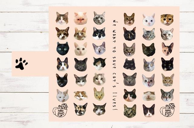 40匹の猫の顔をデザインして作るスマホケース