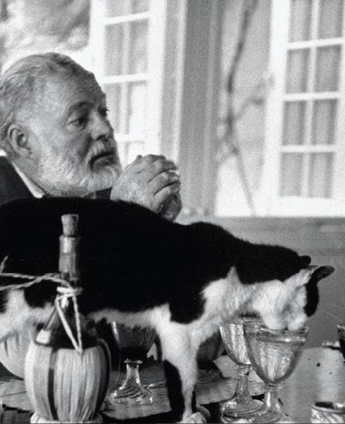 アーネスト・ヘミングウェイ(Erenest Hemingway)と猫