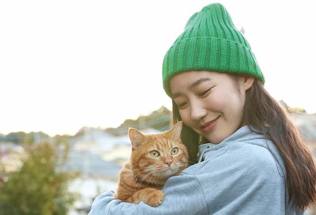 「SOTETSUSTORY(そうてつすとーりー)」の第1話、「ネコはきまぐれ」