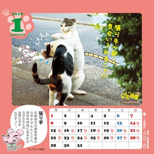 相撲用語の解説が付いたカレンダー、にゃんこ相撲カレンダー2018