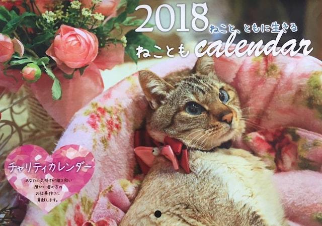 2018年のチャリティー猫カレンダーの表紙 by 福岡ねこともの会