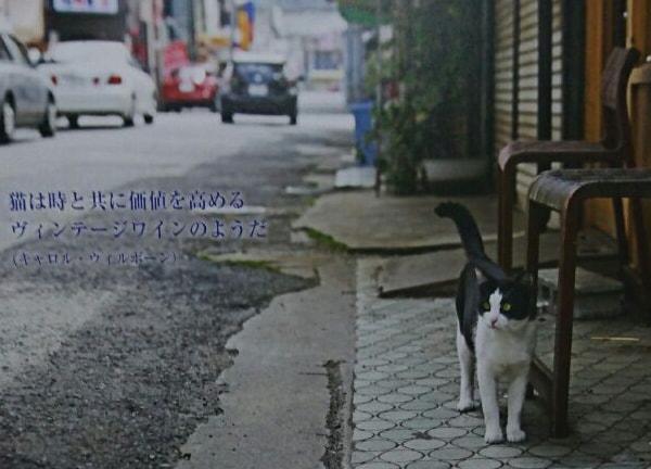偉人たちによる猫の名言付きカレンダー by 福岡ねこともの会