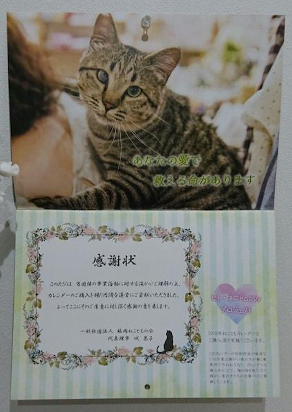 2018年の猫カレンダーは感謝状付き by 福岡ねこともの会