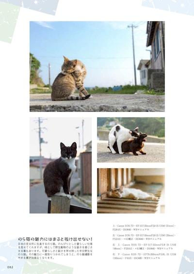 書籍「ねこの撮り方まとめました!」第六章、のら猫 写真旅