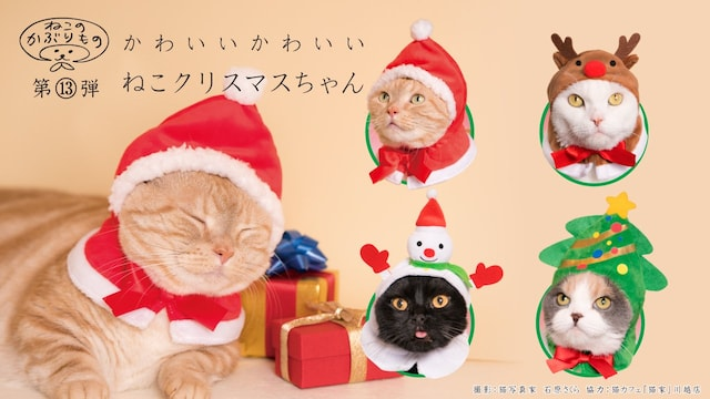 キタンクラブのカプセルトイ、猫用のかぶりもの「かわいい かわいい ねこクリスマスちゃん」