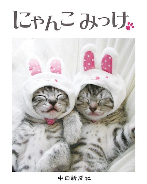 中日新聞社出版部より発売された写真集「にゃんこ みっけ」