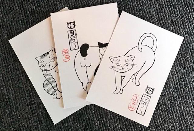猫の絵札ミニカードが付属