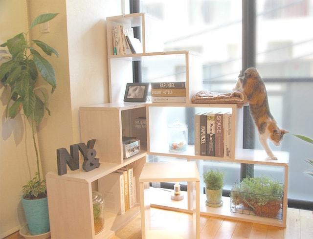 「猫×人」家具ギャラリー