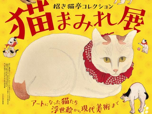 猫の美術品コレクター、招き猫亭の「猫まみれ展」函館美術館で開催中