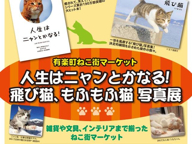 有楽町マルイでニャン吉&飛び猫の写真展など、猫のイベントが開催