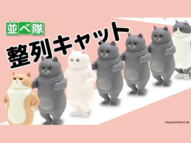 思わず並べたくなってしまう猫フィギュア「並べ隊 整列キャット」