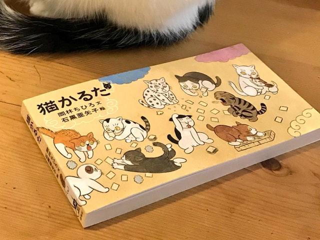 猫好き同士で遊ぶニャ!猫あるあるをギュッと詰め込んだ「猫かるた」