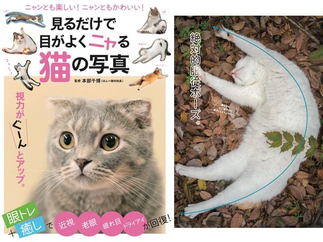 眼トレ+癒しが詰まったムック本「見るだけで目がよくニャる猫の写真」