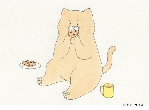 人気の猫キャラ「ネコノヒー」