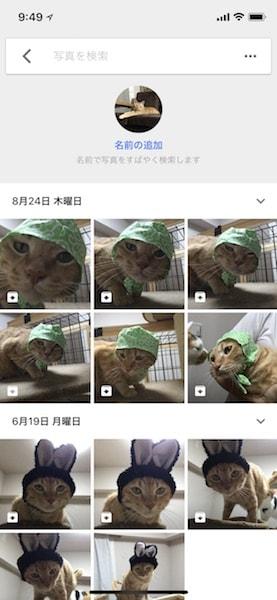 ペット写真の自動グルーピング機能 使い方手順4 by Googleフォト