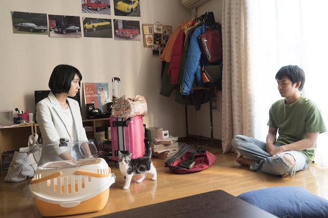 ドラマ「ブランケット・キャッツ」の放送シーン2