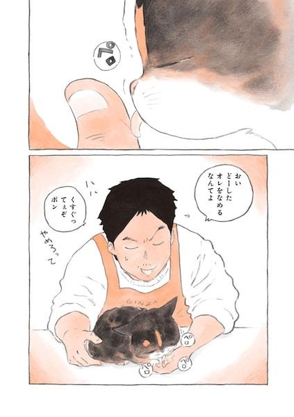喫茶店の店主に面倒を見てもらう捨て猫のポンちゃん by 「ねことマスター 幸せをよぶ看板猫」