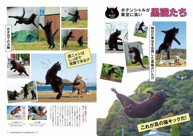 のら猫拳に登場する黒猫 by 黒猫マニアックスVol.2