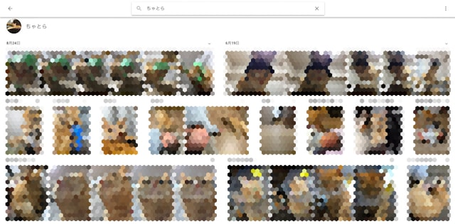 Googleフォトはペットの写真を自動でグルーピング