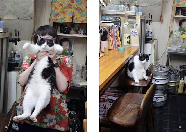 猫とお酒を呑めるお店 by 猫と呑み助 東京「猫呑み」のススメ