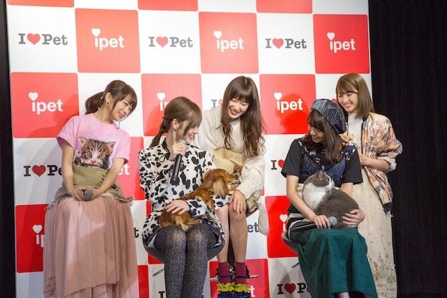 乃木坂46が出演するCM発表会に登場した猫と犬