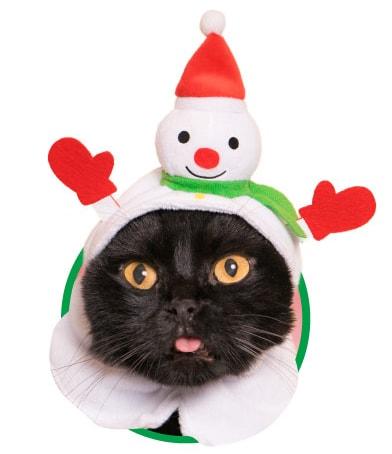 猫用のかぶりもの、雪だるま