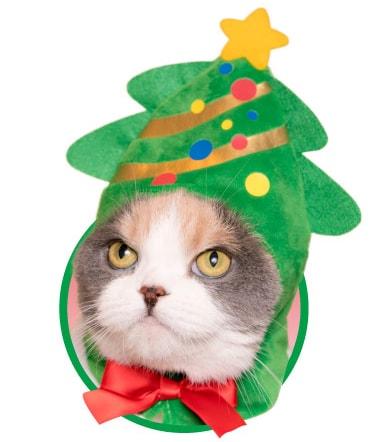 猫用のかぶりもの、クリスマスツリー