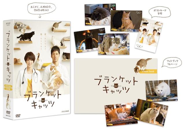 「ブランケット・キャッツ」DVDボックスと特典内容