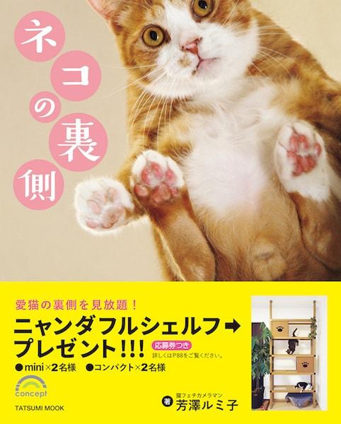 芳澤ルミ子さんの写真集「ネコの裏側」