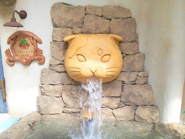 吉祥寺の猫カフェ「Cat Cafe てまりのおしろ」の入口