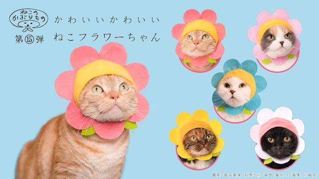 キタンクラブのカプセルトイ、猫用のかぶりもの「かわいい かわいい ねこフラワーちゃん」