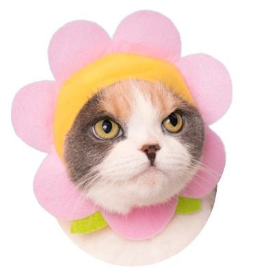 猫用の「お花」のかぶりもの ライトピンク