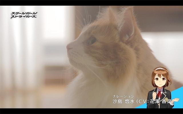 スクスト猫動画・きょうの隊長さん「悩む隊長さん」編のシーン4 by ナレーション:沙島 悠水(CV: 花澤 香菜)