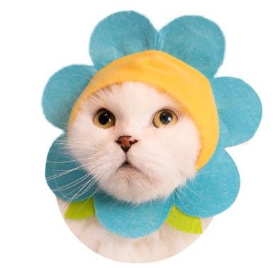 猫用の「お花」のかぶりもの ブルー
