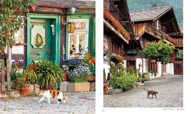 ドイツ(ハルバーシュタット)の猫、スイス(ブリエンツ)の猫