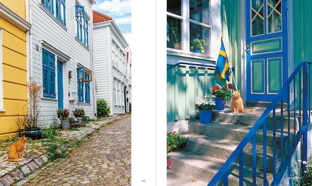 ノルウェー(ベルゲン)の猫、スウェーデンの猫