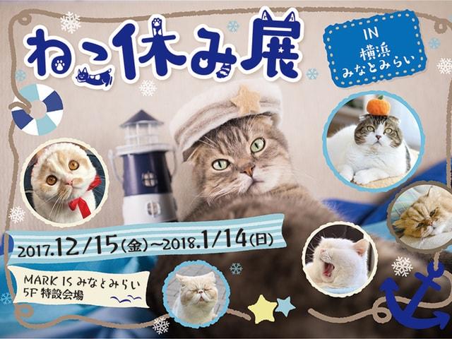 年末年始も猫まみれ!大規模猫イベント「ねこ休み展」が横浜みなとみらいで初開催